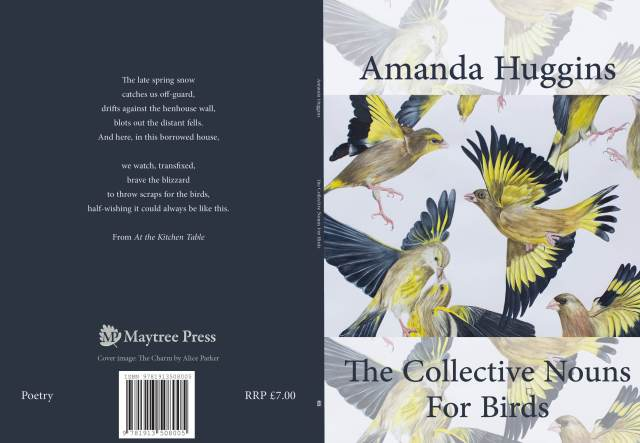 Amanda Huggins Cover
