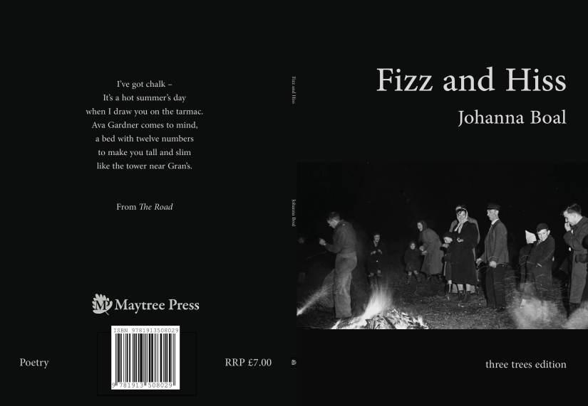 Fizz cover